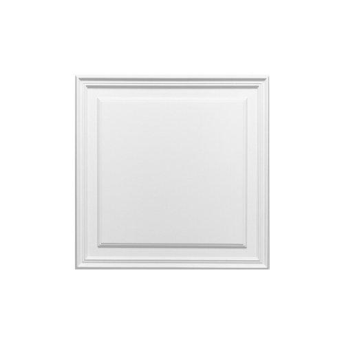 Panel drzwiowy D503 (wym.55x55x1.7cm)